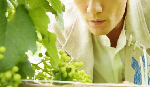ワイン愛飲家、元SMAP稲垣吾郎が語る『ワイン観』。それを読んだ編集長の『ワイン観』とは。