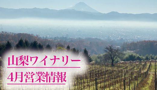【ワイン好き、ワイナリー好き、山梨旅行予定者必見】山梨県のワイナリー見学について、各ワイナリーの3月末〜4月の営業情報をまとめ。山梨ワイン、山梨ワイナリーのことなら山梨ワインドットノムにお任せ!