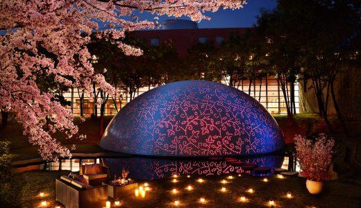 【必見】ワインを優雅に楽しむ。恋人との春休みデートはロマンティックロゼステイ!限定特等席で観れる夜桜見物はここだけ!『水限定特別プラン』
