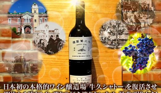 【ワイン好き必見!!】日本遺産に認定された日本のワイン城【牛久シャトー】を復活させよう!!